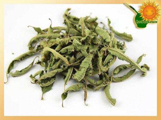 Werbena Cytrynowa liście suszone - Verbena officinalis